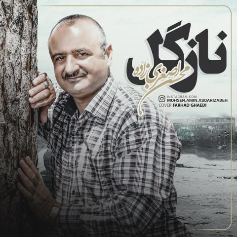 دانلود آهنگ جدید محسن اصغری زاده نازگل