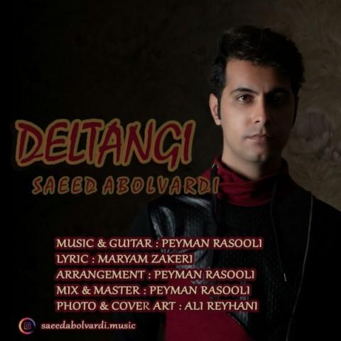 دانلود آهنگ جدید سعید ابوالوردی دلتنگی